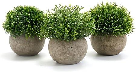 Material de Primera Calidad: esta planta falsa está hecha de plástico de alta calidad, cada parte de