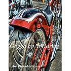 Gogga op 'n Harley (Afrikaans Edition)