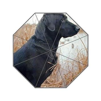 lifei Business caza negro Labrador Perro Animal UV Hombres del paraguas paraguas personalizado paraguas superior personalizado