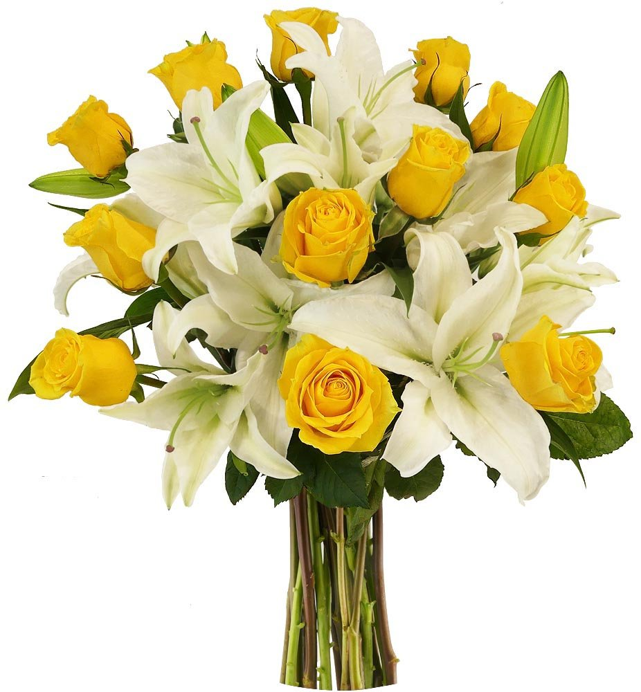 Amazon Benchmark Bouquets Yellow Roses And White Oriental