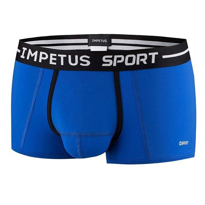 Impetus – Boxer azul small