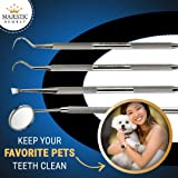 Dental Hygiene Tool Set - Stainless Steel Dental