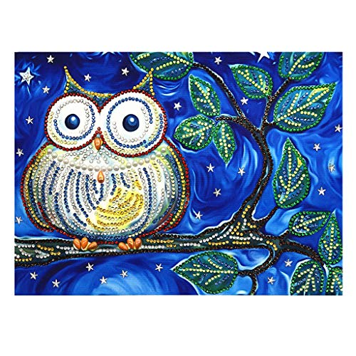 Outique DIY 5D Diamond Painting by Number Kits Painting DIY 5D Partial Drill Cross Stitch Kits Crystal Cute owl Home Wall Decoration]()