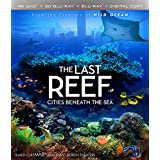 The Last Reef : Cities Beneath The Sea