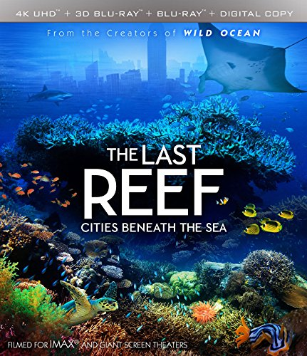 4K Blu-ray : Imax: The Last Reef: Cities Beneath The Sea (With Blu-Ray, 4K Mastering, Widescreen, Digital Copy, 2 Pack)