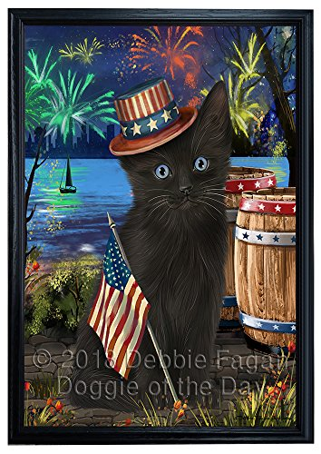 4th of July Independence Day Fireworks Black Cat at the Lake