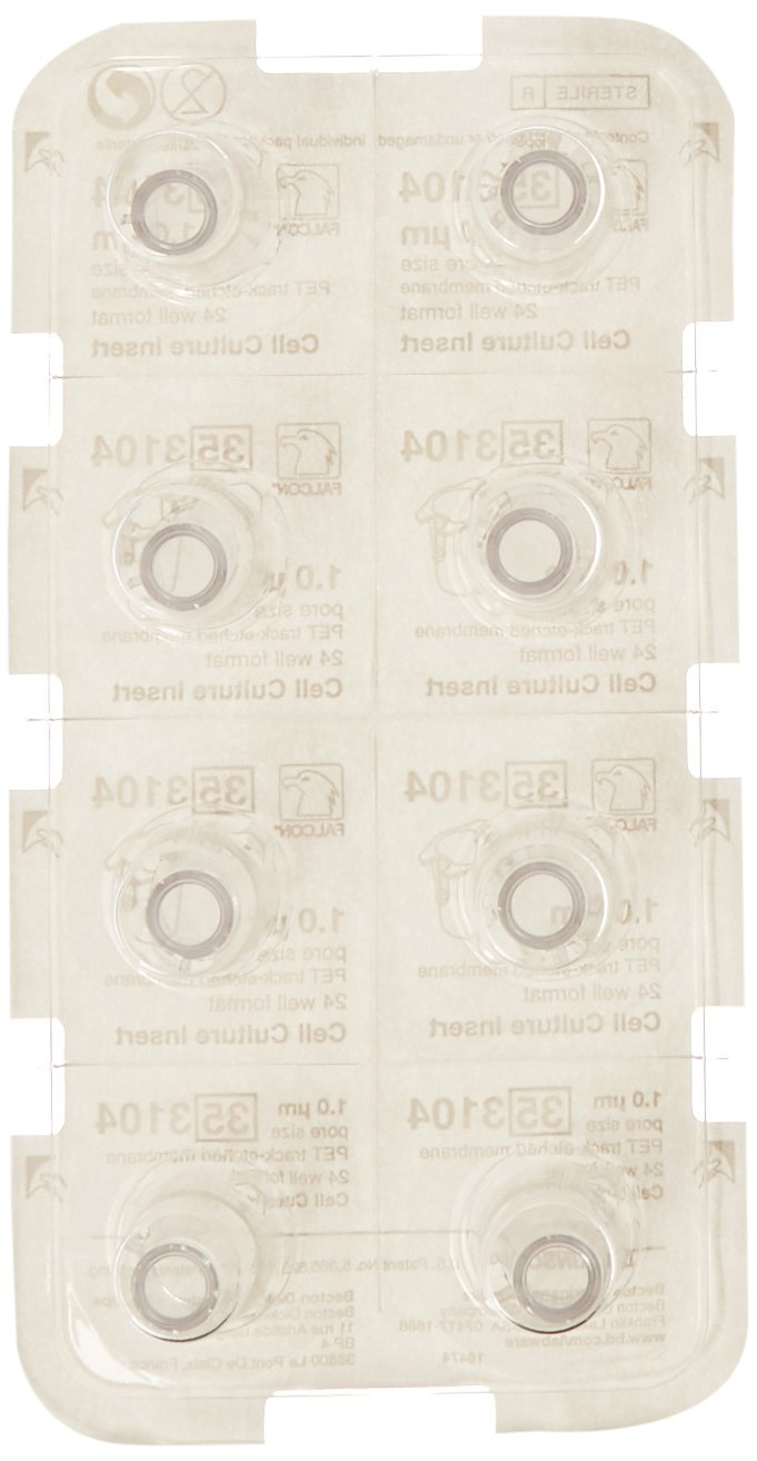 BD 353104 Falcon Translucent Polyethylene Terephthalate Cell Culture Insert, 0.2-0.35mL Volume, 1.0 Micron Pore, For 24 Well Plates (Case of 48) by BD (Image #2)