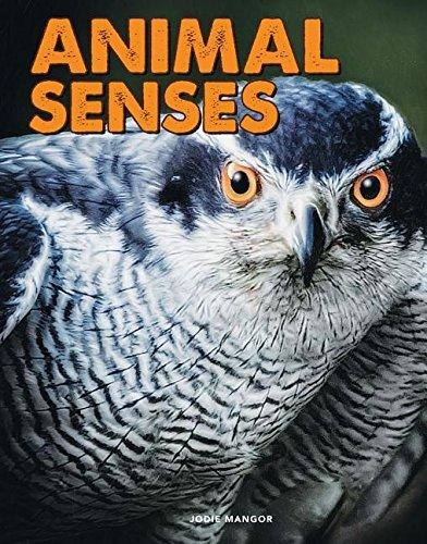 Animal Senses (Science Alliance) (English Edition)