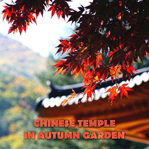 Chinese Temple in Autumn Garden: Asian Zen Spiritual Music, Japanese Nature Sounds, Cherry Spring Pond, Golden Light in the Rainy Night