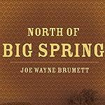 North of Big Spring | Joe Wayne Brumett