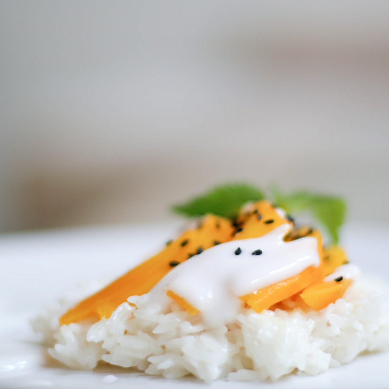 Extra Super Quality Thai Sweet Rice - 5 lbs.