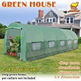 Strong Camel Hot Green House 24.6' X 10' X 7' H Larger Walk In Outdoor Plant Greenhouse