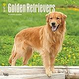 Golden Retrievers Dogs Wall Calendar 2018 {jg} Best Holiday Gift Ideas - Great for mom, dad, sister, brother, grandparents, , grandchildren, grandma, gay, lgbtq.