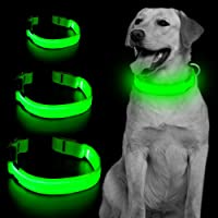 Vizpet LED Dog Collar Safety Adjustable Nylon Pet Collar with Metal Buckle High Visibility at Night Walks for Dogs Small…