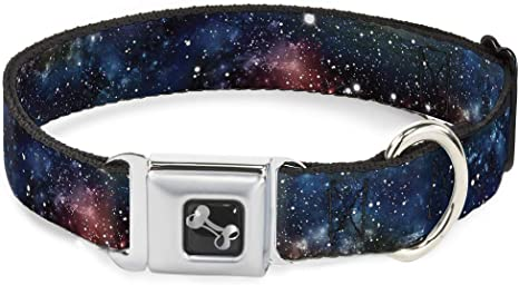 Buckle-Down Seatbelt Buckle Dog Collar - Space Dust Collage
