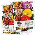 Seed Needs Zinnia Crazy Mixture Zinnia Elegans Twin Pack Of 250 Seeds Each