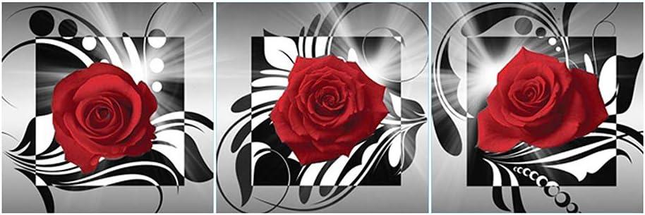 Broadroot 5D DIY Vollbohrer Diamant Malerei Blumen Kreuzstich Stickerei Str