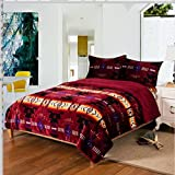 Southwest Design (Navajo Print) King Size 3pcs Set 16112 Burgundy