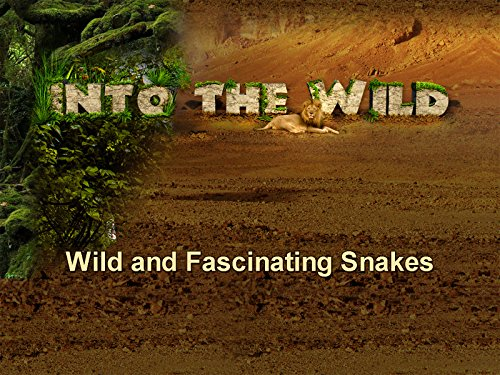 wild-and-fascinating-snakes