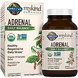 Garden of life probiotic supplement dr formulated fitbiotic probiotics powder for for Garden of life probiotics amazon