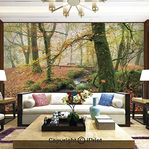 Lionpapa_mural Wall Decoration Designs for Bedroom,Kitchen,Self-AdhesiveMisty Autumn Woodland and Stream at Golitha Falls on Bodmin Moor in Cornwall Decorative,Home Decor - 100x144 inches