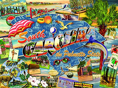 (Sunsout 2019 South Carolina by Artist Kate Ward Thacker 1000 Piece Collage Jigsaw Puzzle)