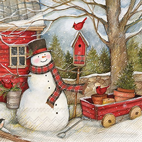 C017400 Holiday Paper Cocktail Napkins, Snowman Barn ()