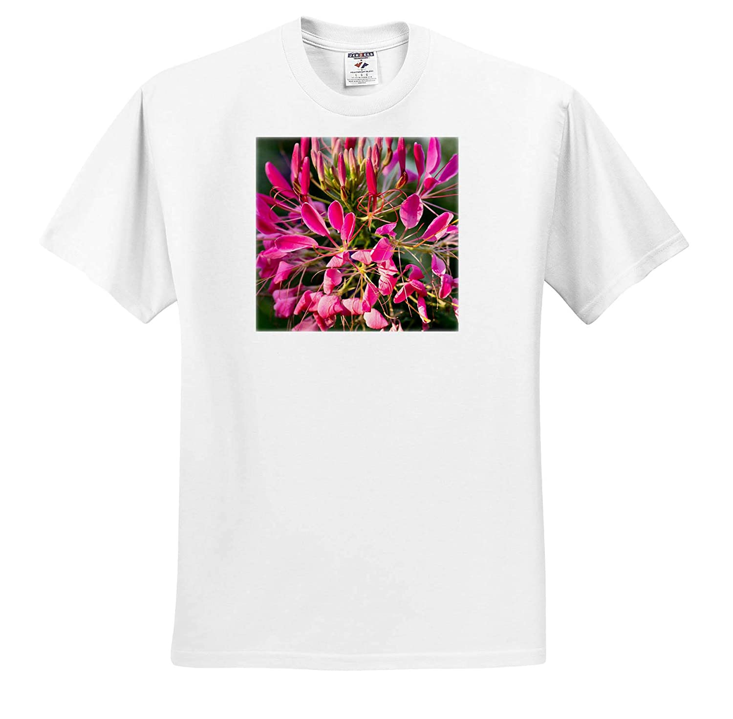 Pink Decorative Flowers T-Shirts Flowers Sunny Day in The Garden Closeup View 3dRose Alexis Photography