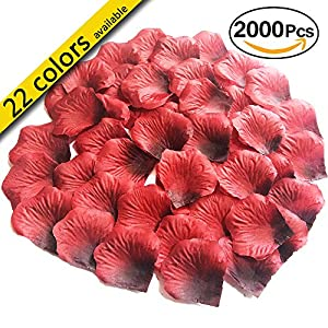 MayaRed 2000 PCS 22 Colors Artificial Silk Rose Petals Wedding Flower Decoration 120