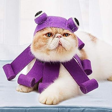 POPETPOP - Disfraz de Halloween para Gato, Sombrero en Forma de ...