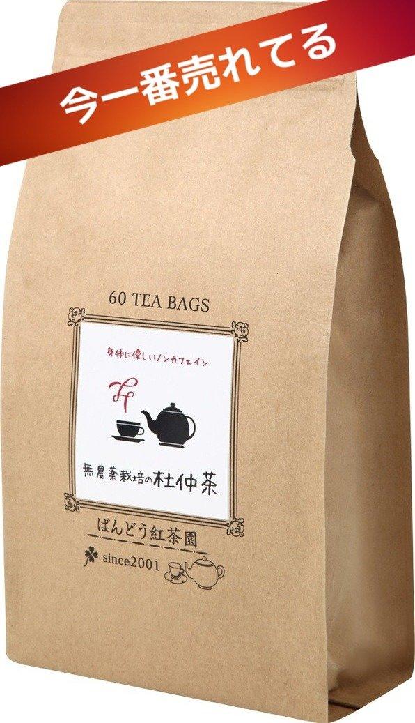 日本産100%無農薬栽培の杜仲茶60ティーバッグ入