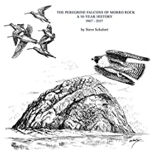 The Peregrine Falcons Of Morro Rock: A 50-Year History  1967-2017