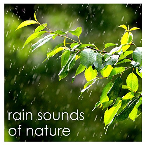 #22 Loopable Rain Sounds from Nature - English Countryside -
