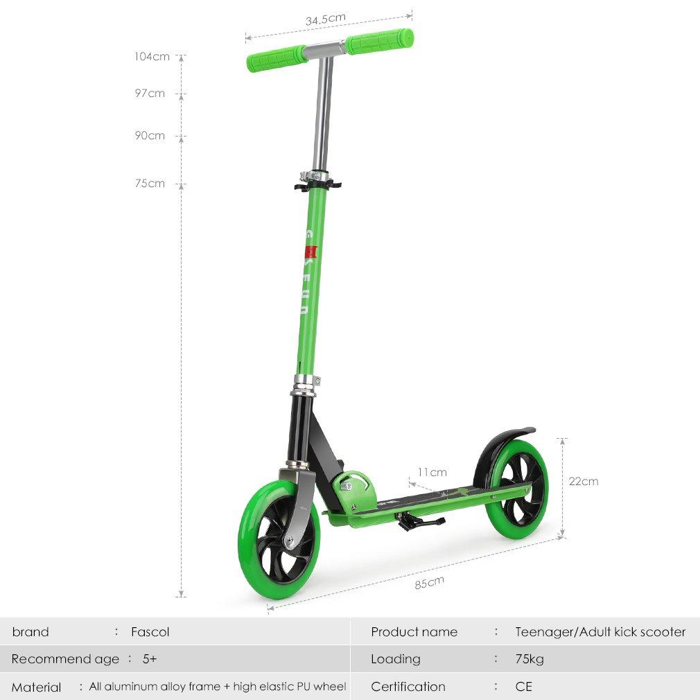 Fascol Scooter para Dos Ruedas para Adultos Adecuado para niños Mayores de Cinco años Patinete Plegable para Kick Máxima Carga 75 kg, Verde