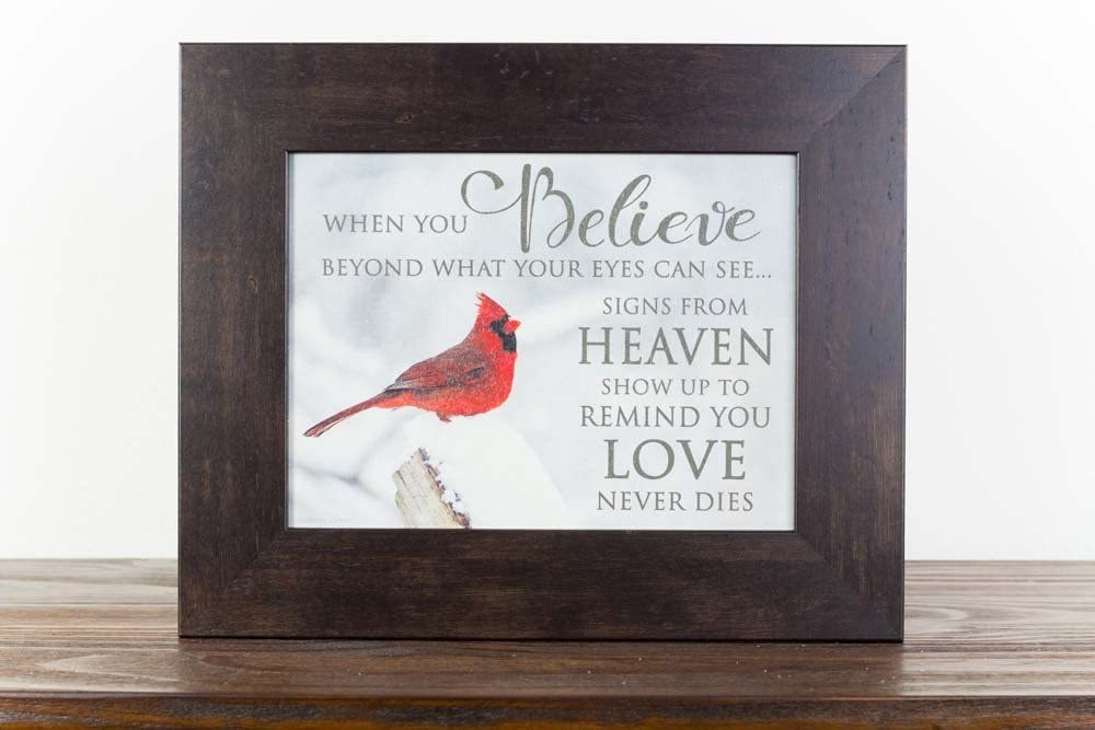 Summer Snow When Believe Beyond What Your Eyes Can See Heaven Cardinal Religious Sympathy Art Decor 13x16