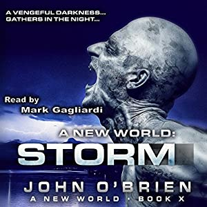A New World: Storm Audiobook
