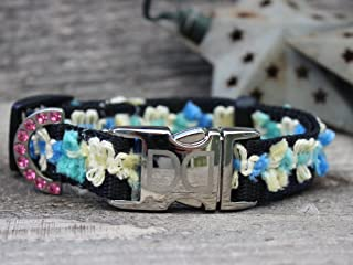 product image for Diva Dogs UBS100 Coco Blue Dog Collar - Extra Small & Small Sized