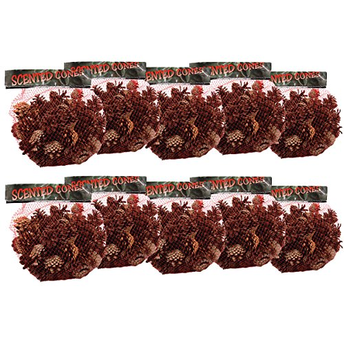 Small Brads Flower (Cinnamon Scented Pine Cones Small Mix 1 Lb/Pkg-Natural)