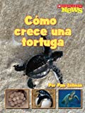 img - for Como crece una tortuga / A Turtle Hatchling Grows Up (Scholastic News Nonfiction Readers En Espanol) (Spanish Edition) book / textbook / text book