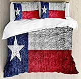Our Wings Western Comforter Set,Texas State Flag Painted on Luxury Crocodile Snake Skin Texture Looking Patriotic Emblem Bedding Duvet Cover Sets Boys Girls Bedroom,Zipper Closure,4 Piece Twin Size