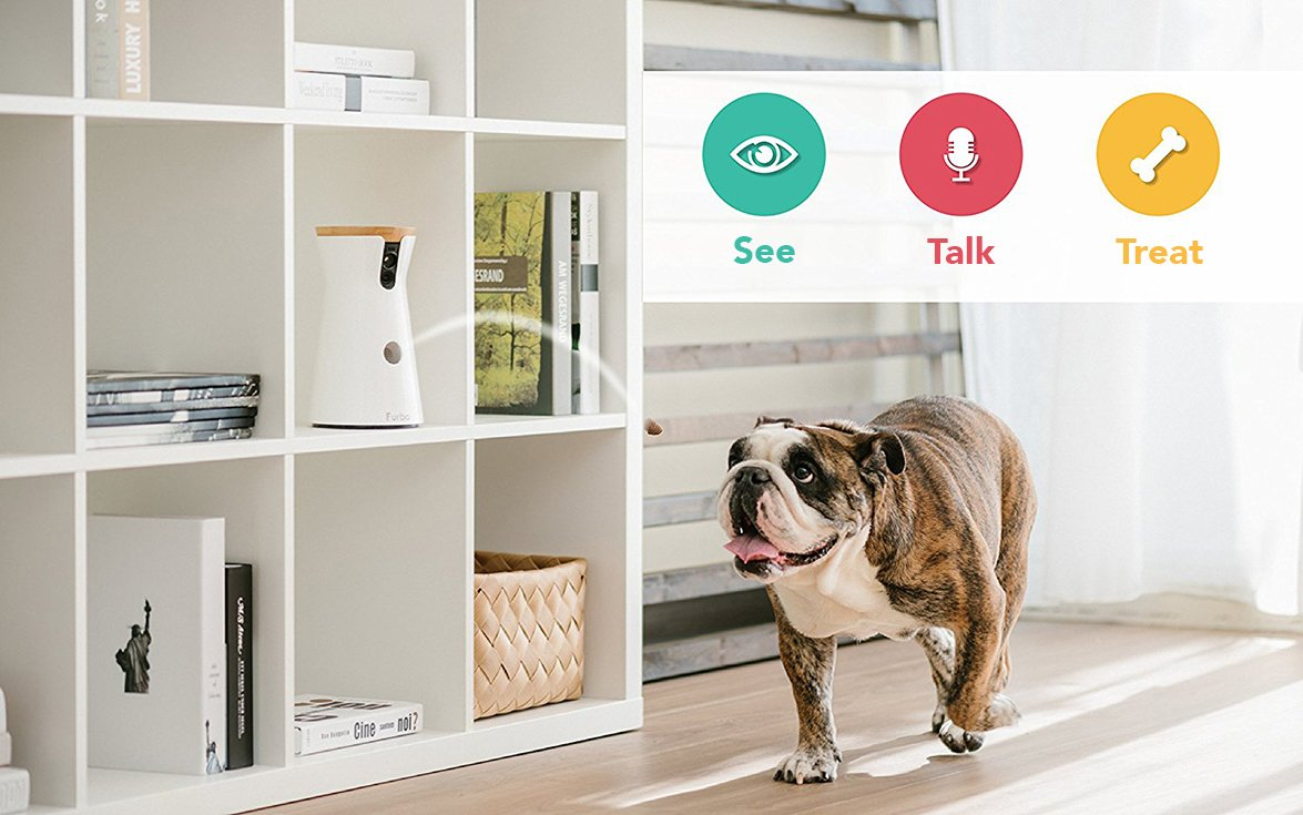 Furbo Dog Camera: Treat Tossing, Full HD Wifi Pet Camera and 2-Way Audio, Designed for Dogs, Compatible with Alexa (As Seen On Ellen) 6