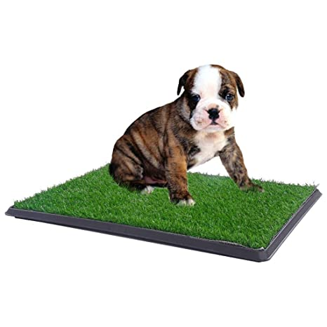 Potty Grass Pad Pet Trainer Indoor Dog Bathroom 30u0026quot; X 20u0026quot; ...