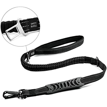 Companet Dog Leash 6ft with Highly Reflective Threads and Bungee Buffer Leash Durable 2 Soft Padded Handles with Car Seat Belt for Medium and Large Dogs