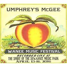 Mashup Set: Live at Wanee 2016