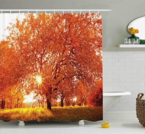 (Ambesonne Landscape Shower Curtain, Autumn Season Fall Trees Sunset in Garden Plant Leaves Relaxing Art Photo, Fabric Bathroom Decor Set with Hooks, 70 inches, Vermillion Yellow)