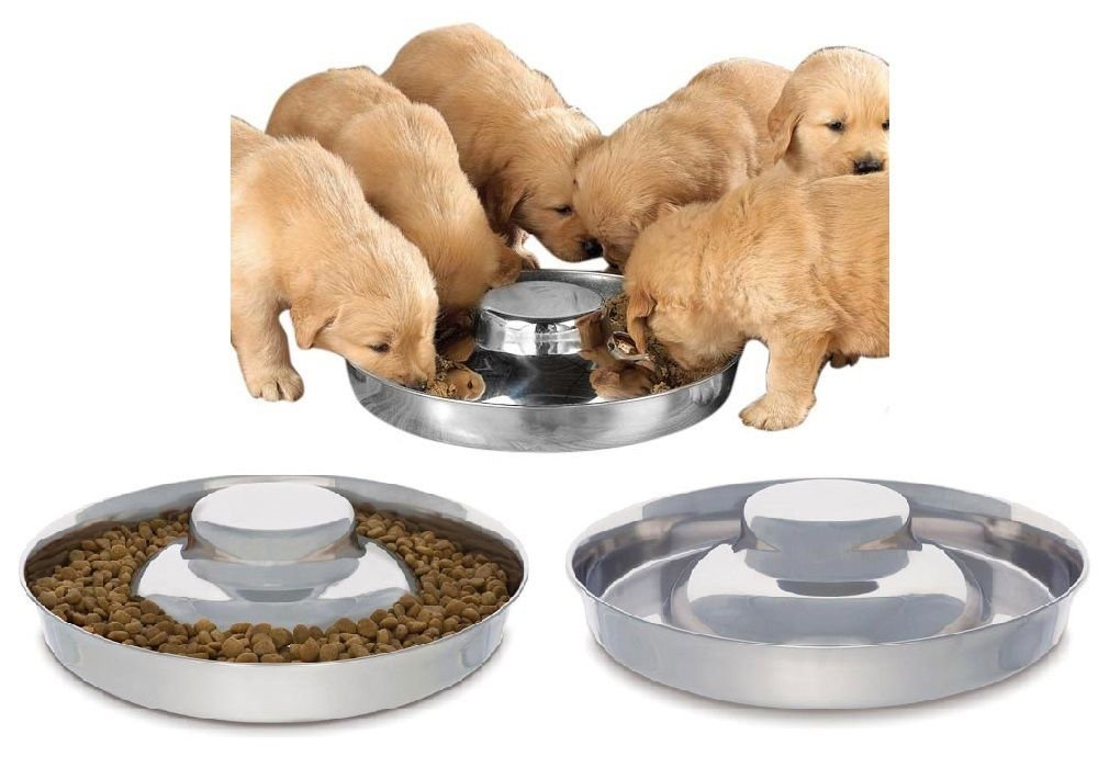 King International Stainless Steel Dog Bowl 2 Puppy Litter Food Feeding Weaning SilverStainless Dog Bowl Dish  Set of 2 Pieces   29 cm - for Small/Medium/Large Dogs, Pets Feeder Bowl and Water Bowl by King International