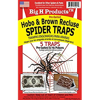 Big H Products Hobo and Brown Recluse Spider Traps