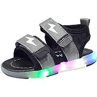 riou Unisex Niños Sandalias Verano relámpago LED luz Deportes Playa Zapatos Sandalias Ligero y cómodo Linda de Dibujos…