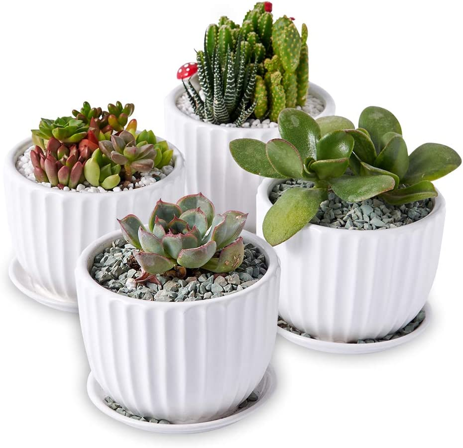 Indoor Small Plant Pots Succulent Pots with Drainage, 4 inch Ceramic Flower Planter Pot White Pack of 4
