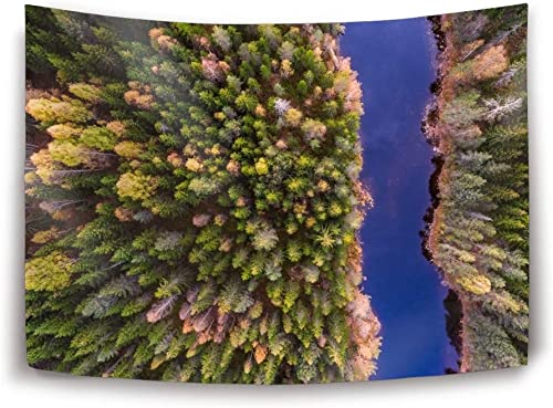Miaoquhe Wall Hanging Tapestry River Forest Tree Aerial Printed Decorative Tapestry Wall Carpet 90 x 60inch
